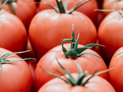 pomidor 5